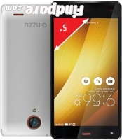 Ginzzu S5020 smartphone photo 3
