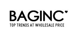 China shop Baginc.com