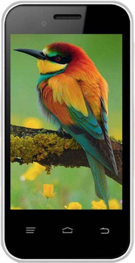 Intex Aqua V5 smartphone